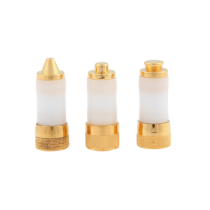 Contact tip 5 mm gold plated voor Cryo stift