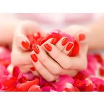 Cursus Basis Manicure inclusief Gellak