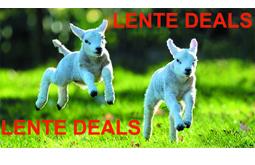 lente deals 2019